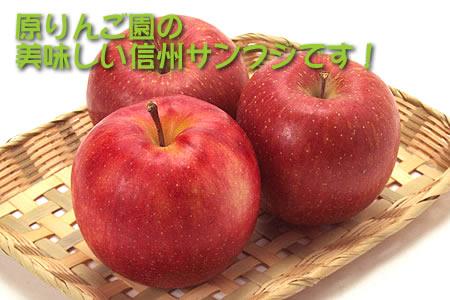 原りんご園の美味しい信州サンふじ