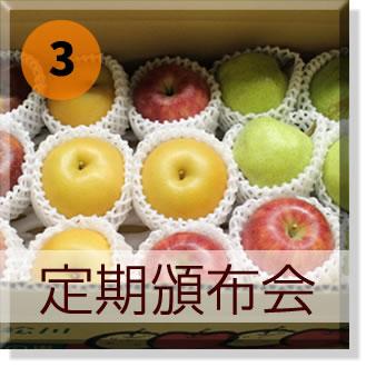原りんご園の旬のフルーツ頒布会