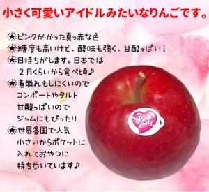 ★ピンクがかった真っ赤な色 ★糖度も高いけど、酸味も強く、甘酸っぱい! ★日持ちがします。日本では  2月くらいから食べ頃♪ ★煮崩れもしにくいので  コンポートやタルト  甘酸っぱいので  ジャムにもぴったり ★世界各国で人気  小さいからポケットに  入れておやつに  持ち歩いています♪